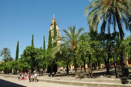 El Patio de la Mezquita de Córdoba