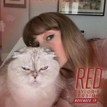 Taylor Swift sorprende a todos sus fans abriéndose una cuenta de TikTok