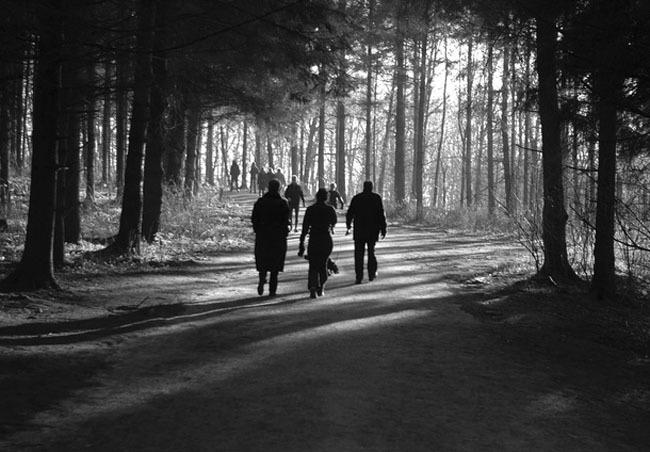 caminar bosque