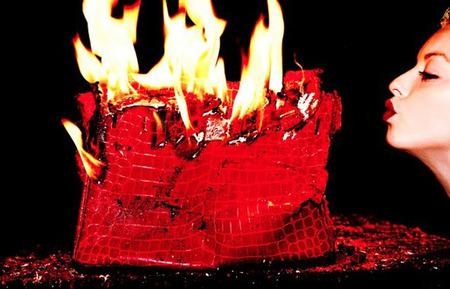 Birkin en llamas