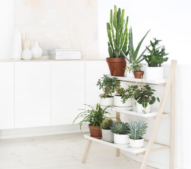 R pidas y f ciles ideas para crear rincones con plantas y - Estanteria para plantas ...