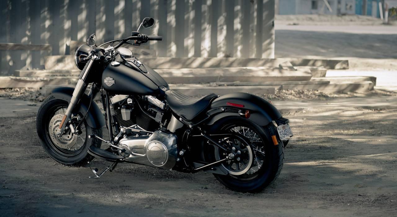 Foto de Harley Davidson FLS Softail Slim (7/9)