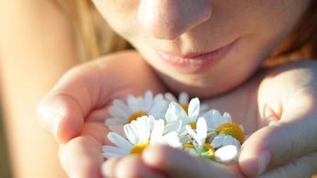 Conociendo los distintos tipos de olores