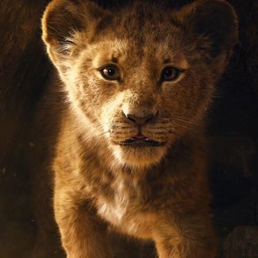 El nuevo tráiler de 'El Rey León', un espectacular despliegue visual que nos traslada a la sabana africana