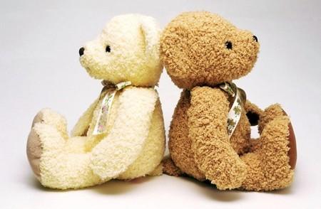 lamina teddy