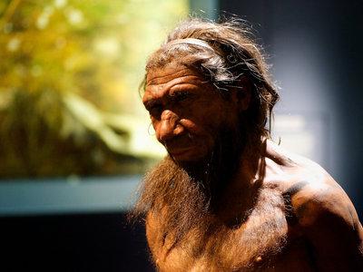 """Los neandertales usaban """"aspirinas"""" y antibióticos hace 50.000 años"""