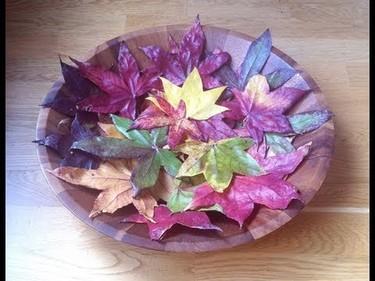 Cómo conservar hojas otoñales para adornar, según isasaweis