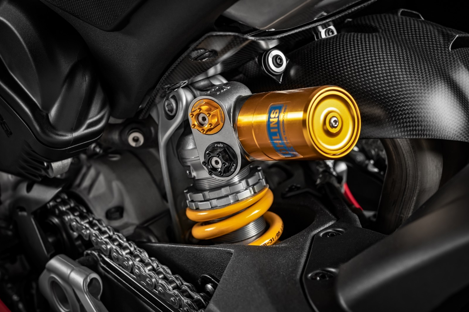 Foto de Ducati Panigale V4 R 2019 (71/87)