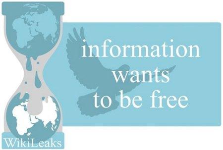 Wikileaks al descubierto, ¿salen las cuentas?