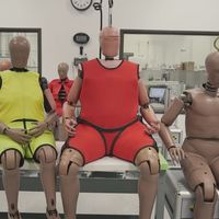 Más viejos y gordos: así serán los dummies en consonancia con la población media estadounidense