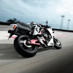 Foto 8 de 11 de la galería yamaha-yzf-r1-2009 en Motorpasion Moto