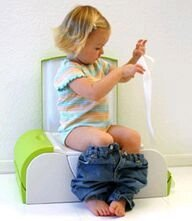 Potty Bench