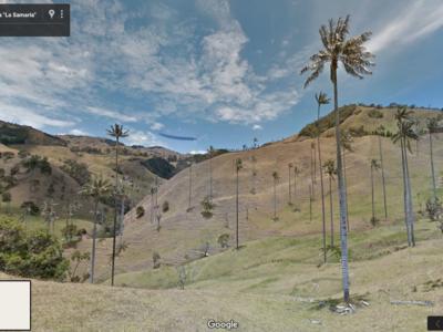 Recorre el Paisaje Cultural Cafetero de Colombia sin salir de tu casa con Google Street View