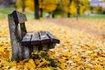 Los seis mejores alimentos para consumir en otoño