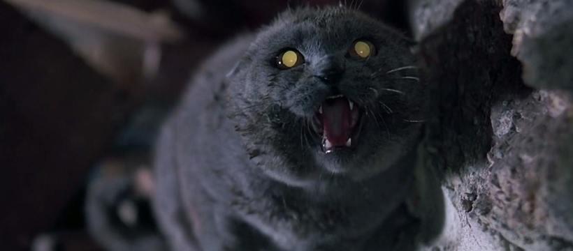 Cementerio De Animales 1989 Crítica Entre Las Mejores Adaptaciones De Stephen King