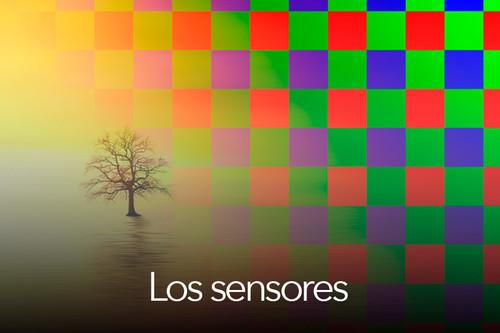 Todo sobre fotografía móvil (5): los sensores fotográficos