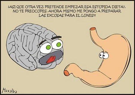 Las dietas también afectan el cerebro