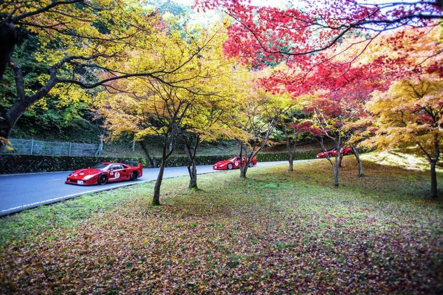 Cavalcade Ferrari