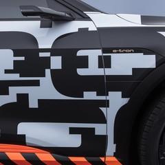 Foto 8 de 21 de la galería audi-e-tron-prototype en Motorpasión