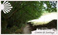 Guía del Camino de Santiago: Cómo preparar el Camino (I)
