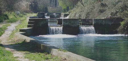 Las Caidas De Aguas Son Una De Las Claves Para Lograr La Transparencia Y Limpidez Del Habitat Del Esturion