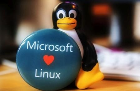 Microsoft Teams llega a Linux, y eso plantea la disponibilidad (al fin) de Office en este sistema operativo