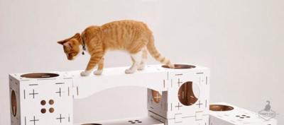 Construye tú mismo una casa de juegos para tu gato con Poopy Cat