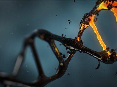 La replicación defectuosa de ADN provoca cambios epigenéticos en 5 generaciones