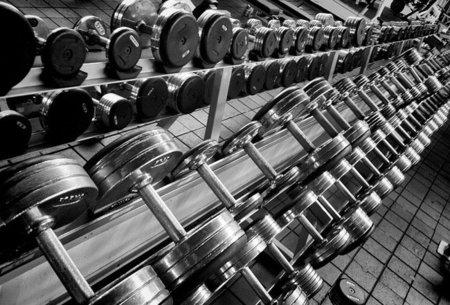 Ejercicios básicos de entrenamiento muscular: los biceps (II)