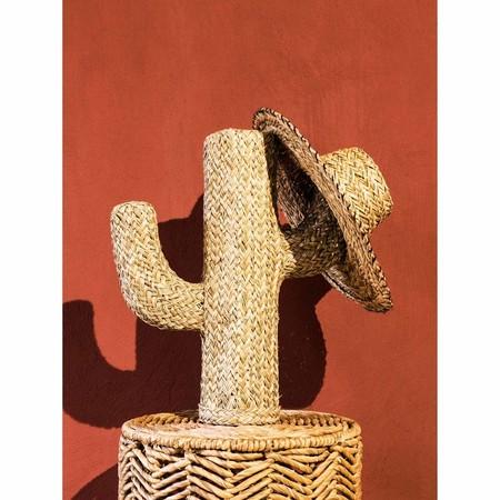 Figura De Cactus De Fibra Vegetal Alt 55 1000 11 37 180109 2