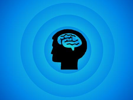 Brain 494152 1280