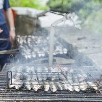 El futuro de la sardina en juego: la UE dictamina hoy si este popular pescado se convierte en un lujo