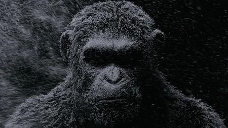 Los 26 mejores momentos de la nueva saga de 'El planeta de los simios'