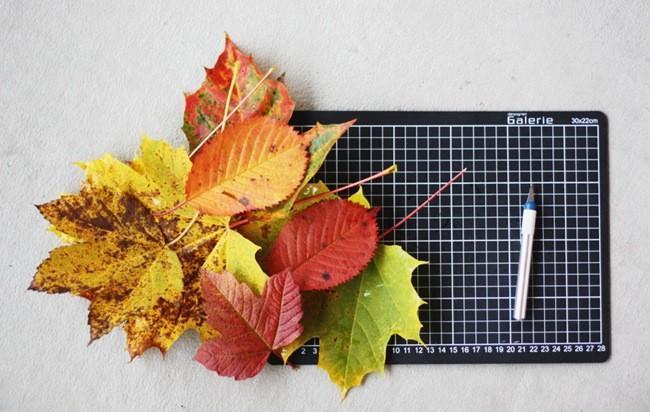 Convierte en monstruos las hojas secas para la noche de Halloween