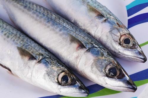 Nuestras mejores recetas con caballa, para disfrutar con este pescado de temporada