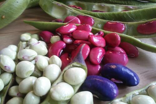 Las siete legumbres con más fibra para calmar el hambre sanamente y 31 recetas para incluírlas en nuestra dieta