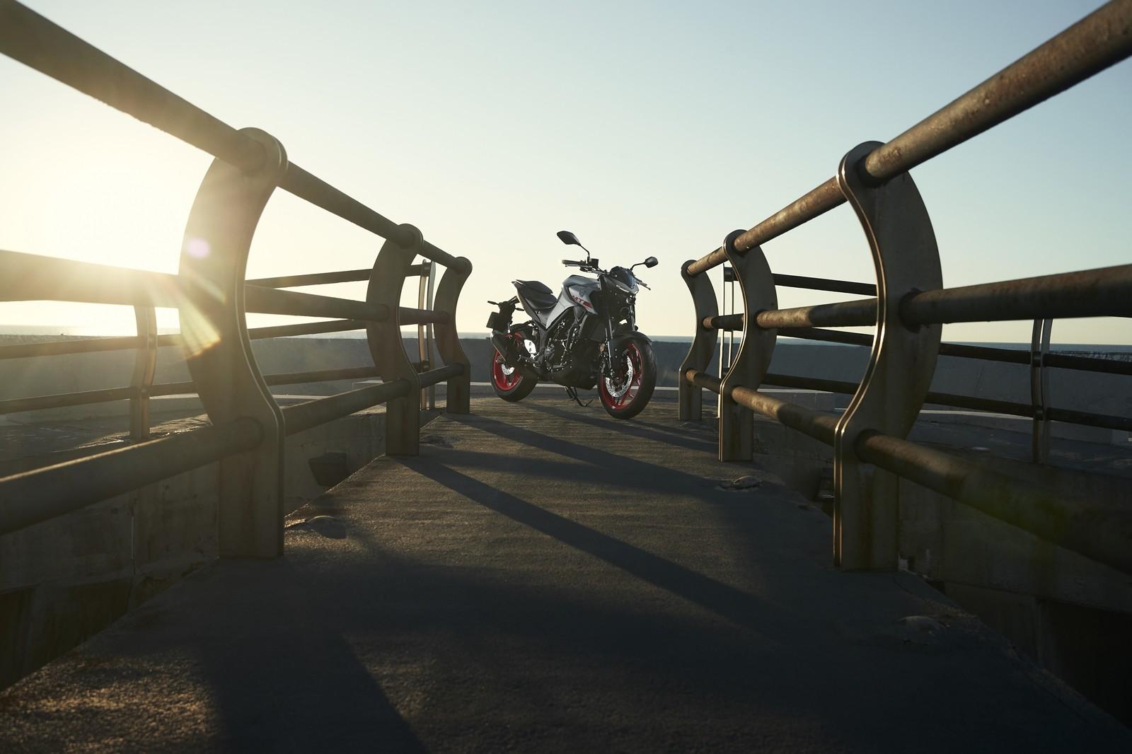 Foto de Yamaha MT-03 2020, prueba (13/33)