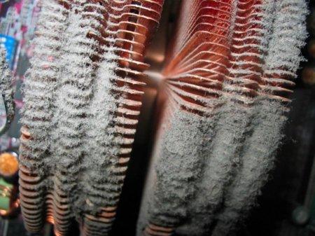 Disipador CPU polvo