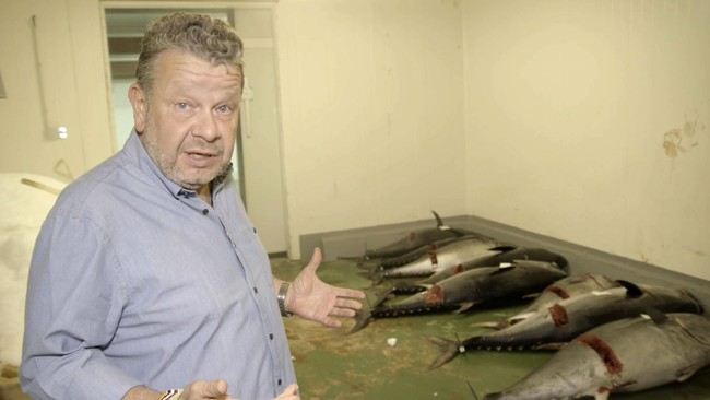 Chicote investiga el fraude del atún rojo: un experto en seguridad alimentaria nos explica el delito contra la salud pública