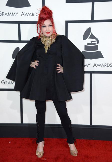 Cyndi Lauper Grammy 2014