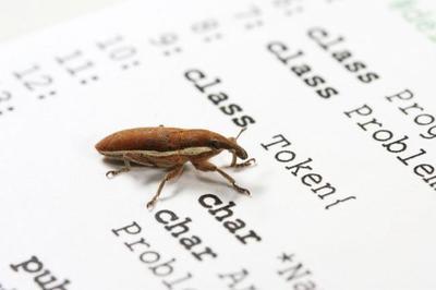 La importancia de escribir correctos informes de bugs