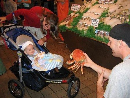 ¿Pueden comer los niños gambas, cangrejos y otros crustáceos?