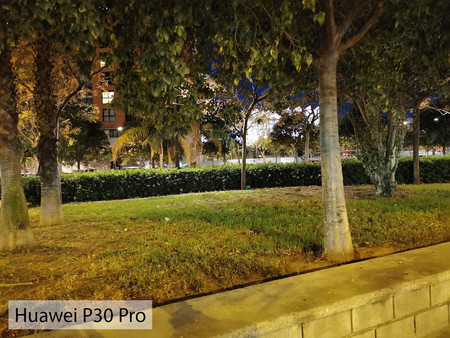 Huawei P30 Pro Auto Noche 01