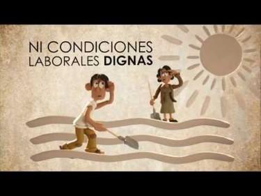 Vídeo: ¿Cómo tener un mundo libre de trabajo infantil?