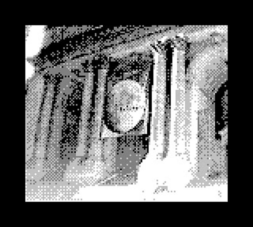 Foto de Game Boy Camera (2/11)