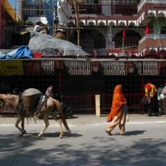 Foto 3 de 11 de la galería vamino-de-la-india-de-haridwar-a-rishikech en Diario del Viajero