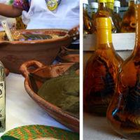 Bebidas infusionadas con insectos venenosos ¿Te atreverías a probarlas?