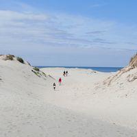 El mundo consume 50.000 millones de toneladas de arena al año y los expertos avisan de que nos estamos quedando sin reservas