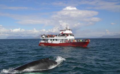 El primer barco turístico del mundo impulsado a hidrógeno