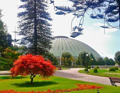 Descubriendo Oporto: el Pabellón Rosa Mota o Palacio de Cristal
